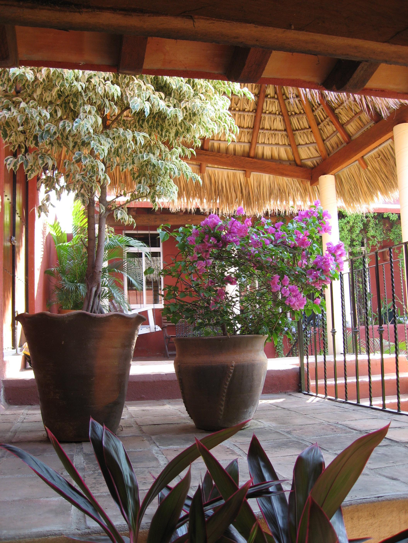 Foyer Planta : Photos